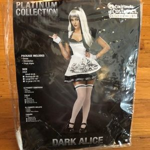 Other - Dark Alice Costume, Never Worn